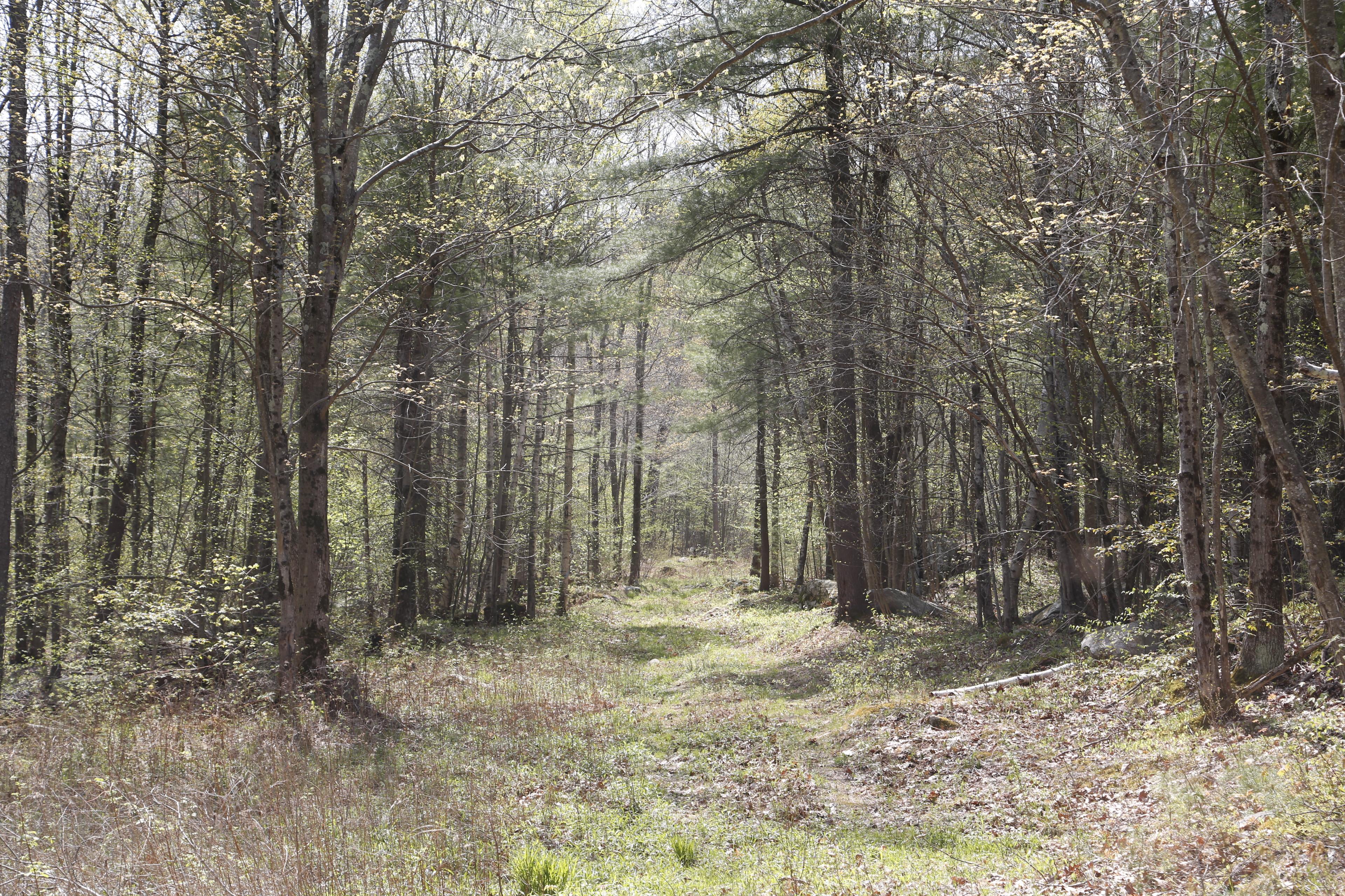 Southfield Land